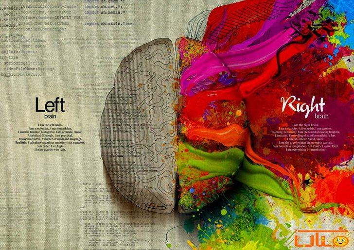 مراحل رشد مغز کودکان